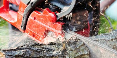 A Guide to Selecting the Perfect Chainsaw, Monroe, Connecticut