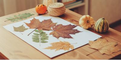 NY Child Care Center Promotes Weather Learning Activities for October, Cortlandt, New York