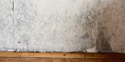 5 Signs You Need to Waterproof Your Basement, Chillicothe, Ohio