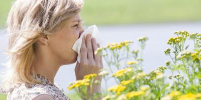 How a Chiropractor Can Help With Allergy Symptoms, Onalaska, Wisconsin