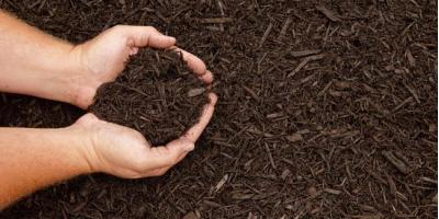 3 Types of Garden Mulch to Use for Your Next Landscaping Project, Holmen, Wisconsin