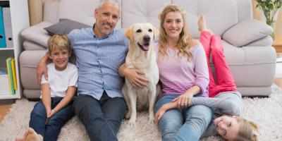 How to Prepare Pets for Cat or Dog Boarding, Churchville, New York