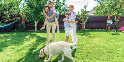 5 Pest Control Tips for Your Yard, White Oak, Ohio