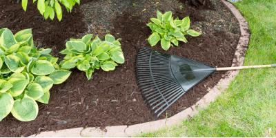 The Do's & Don'ts of Using Mulch for Your Landscaping, Delhi, Ohio