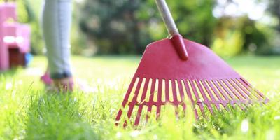 When Should I Start Spring Lawn Care?, Cincinnati, Ohio