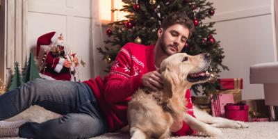 The Ultimate Guide to Pet-Proofing Your Christmas Tree, Sycamore, Ohio