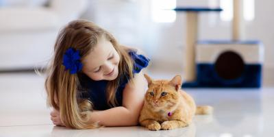 4 Benefits of Spaying or Neutering Your Pet, Springfield, Ohio