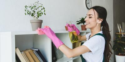 How Cleaning Products Affect the Environment & What to Choose Instead, Gaithersburg, Maryland