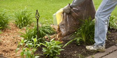 When Is the Right Time to Mulch?, Clearwater, Minnesota