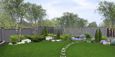 3 Low-Maintenance Trees for Your Landscape, Miamitown, Ohio