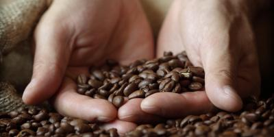 What's the Difference Between Light, Medium & Dark Roast Coffee?, Austin, Texas