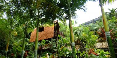 Kona Landscape Firm Provides a Complete Landscape Package, Kailua, Hawaii