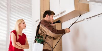3 Reasons to Call Roach Control After Spotting a Cockroach, Mooresville, North Carolina