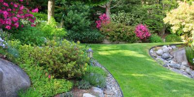 Why Early Spring Is Ideal For Landscape Design Planning Cookeville Tennessee