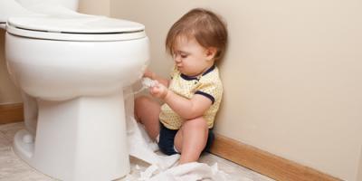 Top 5 Items You Should Never Flush Down the Toilet, Corbin, Kentucky