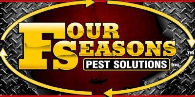 Termite Problems?, Eubank, Kentucky