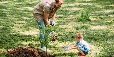 3 Creative Ways to Memorialize a Loved One, Winston-Salem, North Carolina