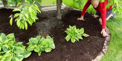 Top 5 Benefits of Mulching, Cromwell, Connecticut