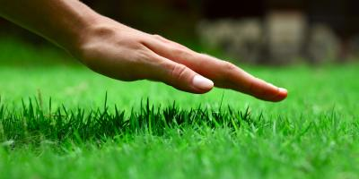 Core Aeration: 3 Things Every Landscaping Enthusiast Should Know, Cromwell, Connecticut