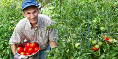 The Top 3 Reasons to Buy Multi-Peril Crop Insurance, Beatrice, Nebraska