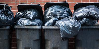 3 Ways Regular Garbage Collection Helps Pest Control, Franklin, Connecticut