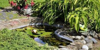 4 Pond Building & Repair Tips to Prevent Disaster, Sunman, Indiana