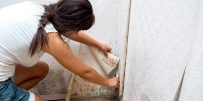 Do's & Don'ts of Finding Mold in Your Home, Dayton, Ohio
