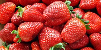 3 Foods That Whiten Teeth, Somerset, Kentucky