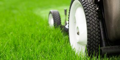 3 Lawn Health Tips to Help Your Grass Survive the Summer, Denver, North Carolina