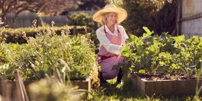 4 Tips for Growing a Vegetable Garden, Hamilton, Ohio