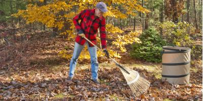 Leaf Removal vs. Mulching, Moraine, Ohio