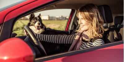 How to Drive Again After an Auto Collision, Greenfield, Minnesota