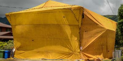 Termite Tenting FAQ, Hilo, Hawaii