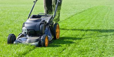 How to Mow Your Way to a Healthier Lawn , Whiteville, Arkansas
