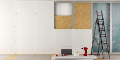 What Pests Damage Sheetrock®?, Fort Worth, Texas