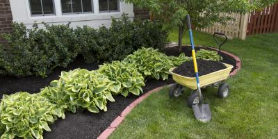 What's the Difference Between Organic Mulch & Rocks for Landscaping?, Burlington, Kentucky