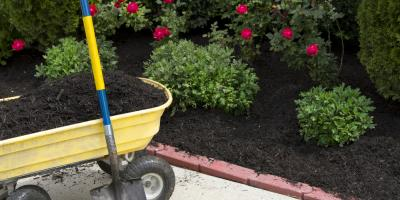 Your Guide to Choosing the Right Mulch, Lancaster, South Carolina