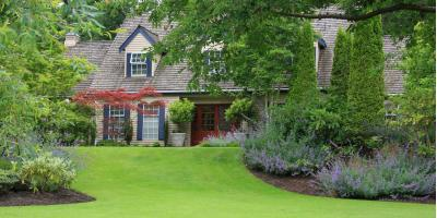 Do's & Don'ts of a Crabgrass-Free Lawn, St. Peters, Missouri