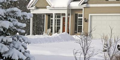 4 Common Tree Care Problems in Winter , West Hartford, Connecticut