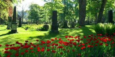 3 Steps for Planning a Green Funeral Service, Morehead, Kentucky