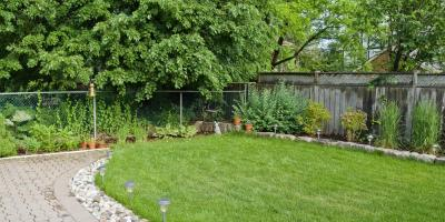 3 Tips for Caring for Your Favorite Backyard Ideas, Sugar Land, Texas