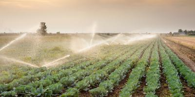 3 Irrigation Tips for Farmers, Waterford, Connecticut