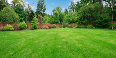 3 Reasons Why Routine Septic Tank Inspections Are Necessary, Peninsula, Ohio