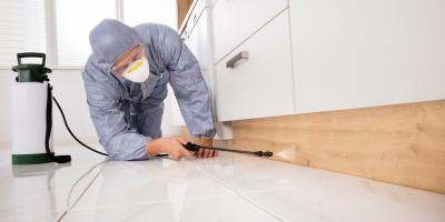 Pest Control Pros Share the Top3 Ways Pests Destroy Homes, Lihue, Hawaii
