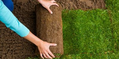 3 Ways Hiring a Sod Company Can Benefit Your Lawn, O'Fallon, Missouri