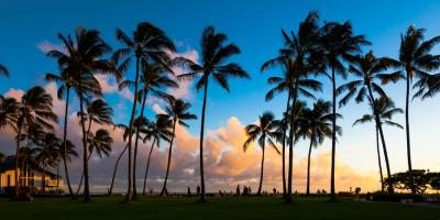 From Hotels to Restaurants: 3 Tips for Planning Your Trip to Hawaii, Honolulu, Hawaii