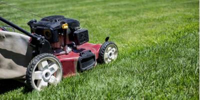 3 Landscape Maintenance Tips for Even the Tightest Budget, Stuarts Draft, Virginia