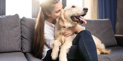 A Canine Owner's Guide to Thyroid Disease, Elyria, Ohio