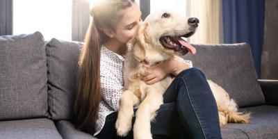 3 Factors in Getting a New Dog After Pet Loss , Atlanta, Georgia