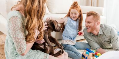 4 Puppy Training Tips, Batavia, Ohio